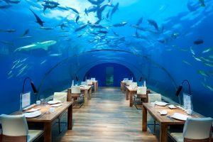 Conrad Rangali Island Maldivi - tamo gde počinje raj! Putovanja po Vašoj želji. Sami određujete: period i dužinu boravka, vrstu usluge (transfer uključen)