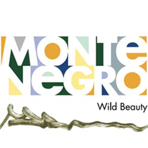 "Crna Gora - ovo malo parče raja netaknute prirode sa pravom nosi naziv ""Wild beaty"""